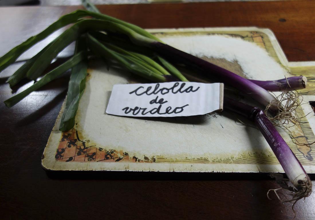 cebolla de verdeo taller empanadas argentina