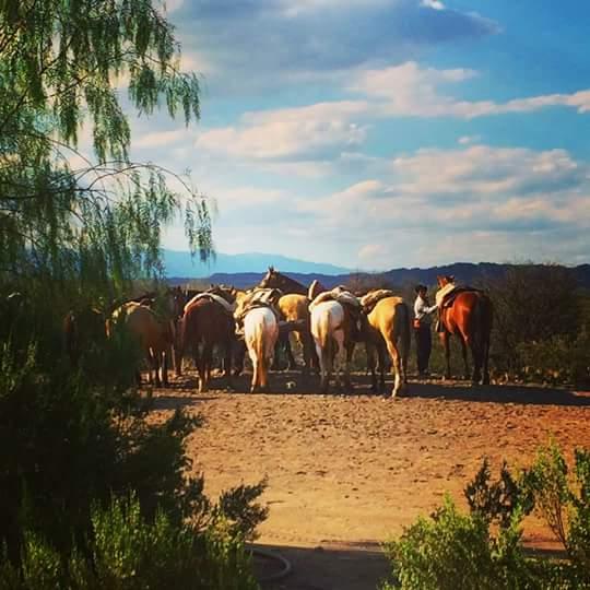 -horse-rideing-mendoza-argentina