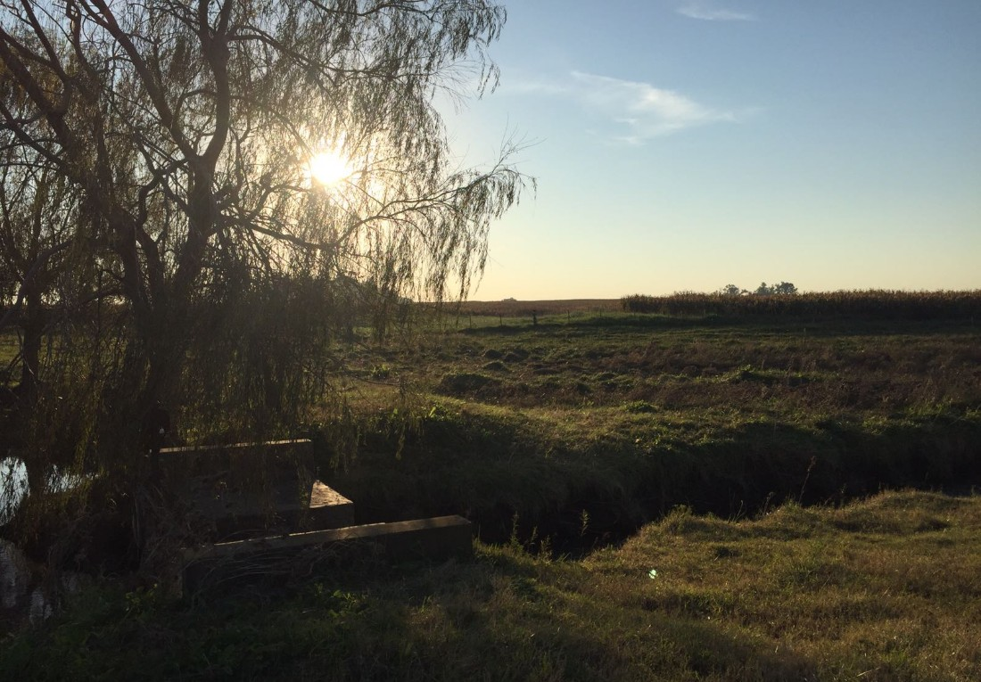 paysage-campestre-argentin-balade-a-cheval-buenos-aires