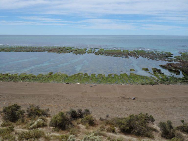 punta norte argentina