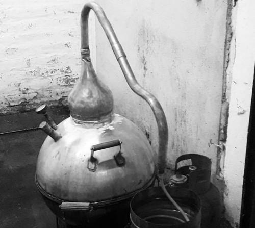 bodega y distilados