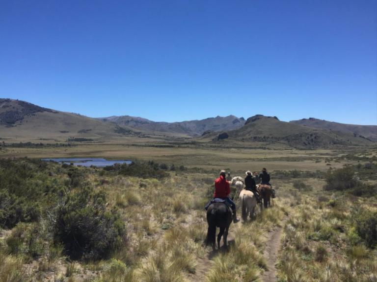 cabalgata en el campo bariloche