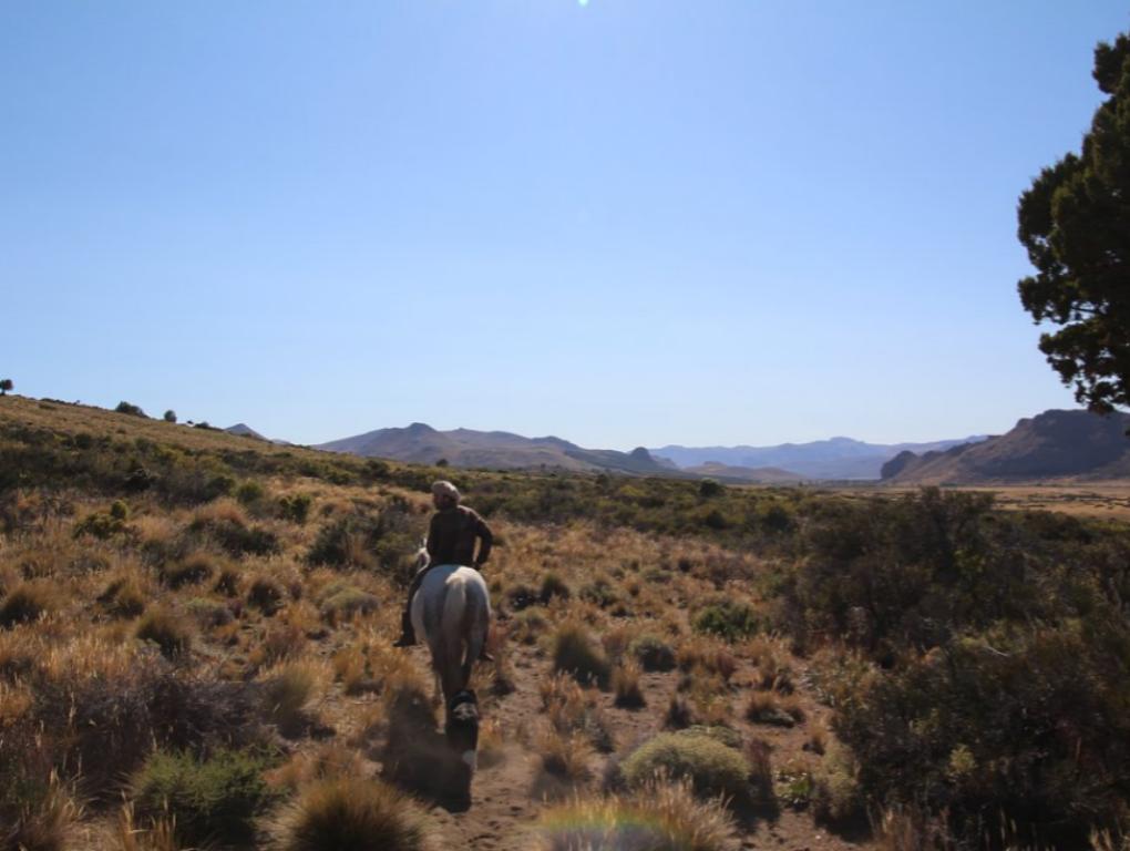 horse riding bariloche