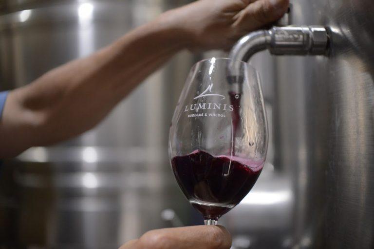 vino mendoza