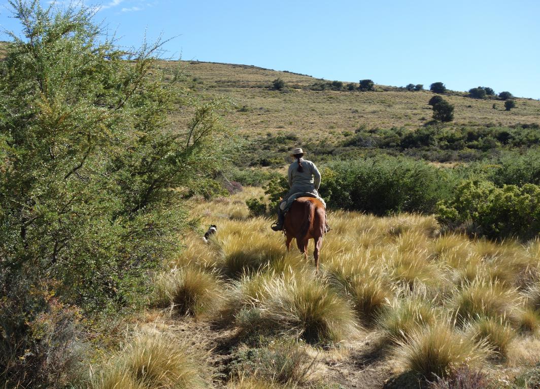 cabalgata estancia patagonia bariloche